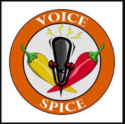 grabar audio online Voice Spice